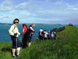 Nordic Walking At Waiheke 2011